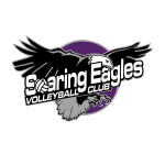 Soaring-Eagles-logo-NOV-2016