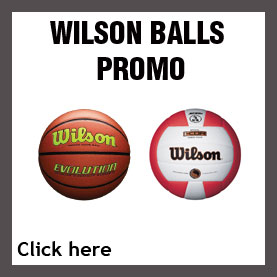 WILSON BALL SALE